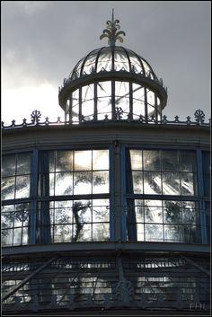 Glass dome -of the biggest green house of the botanical garden in Copenhagen, Cph Center, Kobenhavn, Denmark Copyright: Frank Lisborg