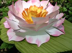 Water Lily - Yes, it's Paper!