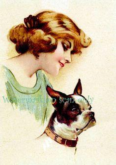 vintage Boston Terrier print