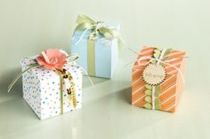 """Mini Box Projects; Endless Birthday Wishes Kit; Dropping You a Line; Summer Happiness Kit; Springtime Hello Stamp Set; Crisp Cantaloupe CS; Bling; Gold Sequins; Linen Thread; Old Olive 1/8"""" Taffeta Ribbon; Pansy Punch; Essential Wooden Elements; May 2014"""