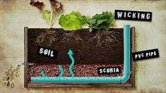 Building a Wicking Bed - {Daily Eco Tip} Conserve water in your veggie patch this Summer by constructing a Wicking Bed. Wicking beds are easily maintained and use between less water than a conventional garden bed. Garden Types, Veg Garden, Garden Planters, Balcony Gardening, Vegetable Gardening, Galvanized Planters, Gardening Books, Flower Gardening, Gardening Tips
