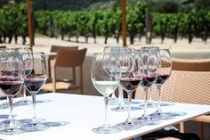 Tips for wine touring in Napa Valley