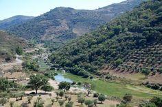Serra de Mogadouro - PORTUGAL - Pesquisa Google
