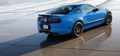 shelby mustang (8)