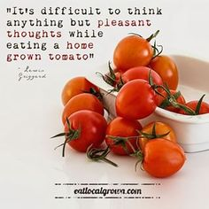 It's difficult to think anything but pleasant thoughts while eating a homegrown tomato. - Google Search