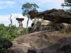 Chaliang Rock, Pha Taem National Park, Khong Chiam District, Ubon Ratchathani Province, Thailand. Pha Taem National Park (Thai:อุทยานแห่งชาติผาแต้ม) is a national park in the Ubon Ratchathani province of Isan, Thailand. It is notable for its Dipterocarp forest cover and for extensive rock art on cliffs above the Mekong river. The art is estimated to be 3000 years old. The park also has several examples of Mushroom rocks as well as the largest flower field in Thailand.
