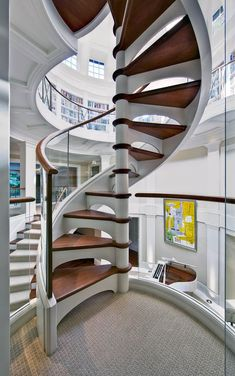 8 Humorous Cool Tips: Transitional Bedroom Wall Colours transitional house sinks. Spiral Staircase Kits, Staircase Design, Spiral Staircases, Transitional Living Rooms, Transitional House, Transitional Lighting, Interior Stairs, Apartment Interior, Canterbury
