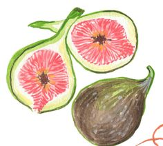 figs by Sandra Eterovic Fruit Illustration, Food Illustrations, Sketchbook Inspiration, Art Inspo, Food Art, New Art, Art Sketches, Watercolor Art, Design Art
