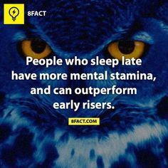 Night Owls...