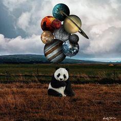 Ideas for Decorating a Bedroom in a Panda Theme Cute Panda Wallpaper, Bear Wallpaper, Disney Wallpaper, Panda Wallpapers, Cute Wallpapers, Panda Decorations, Baby Panda Bears, Baby Pandas, Panda Party