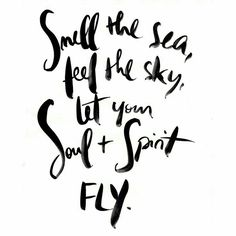 Let them fly ✈