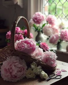 Beautiful Flower Arrangements, Floral Arrangements, Beautiful Flowers, Beautiful Flower Quotes, Letter Photography, Focus Photography, Raindrops And Roses, Plants Are Friends, Peonies Bouquet