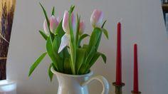 Kis tavaszi előzetes