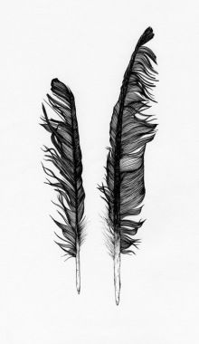 Fallen Feathers By Claire Scully Her Inspiration Often Comes...