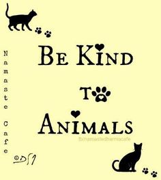 be kind to animals essay Four major types of essays narrative writing and informative writing take young writers on an animal-filled adventure to beginning essay writing.