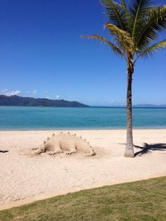 sand art on hayman island, australia
