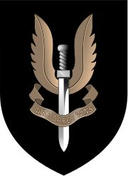 The Special Air Service (SAS) is a unit of the British Army founded in 1941 as a regiment, and later reconstituted as a corps in 1950. This special forces unit undertakes a number of roles including covert reconnaissance, counter-terrorism, direct action, hostage rescue and human intelligence gathering