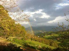 Corte's rainbow