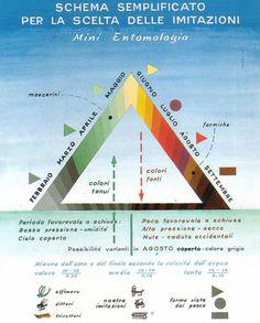 Il Triangolo di Ghilardi