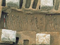 Did the Black Death Rampage Across the World a Century Earlier Than Previously Thought? | History | Smithsonian Magazine Science Daily, Black Death, The More You Know, World History, Archaeology, Social Studies, Medieval, Genetics, Thoughts