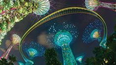 take a scenic stroll 22 metres above ground on the circular ocbc skywalk gardens by the bay