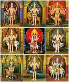 Asitanga Bhairava—Hamsa, Ruru Bhairava—Vrishabha, KroDha Bhairava—Garuda, Unmattha Bhairava—Asva / mahisha, Kapala Bhairava—Gaja, Biishaana Bhairava—Pretha, Chanda Bhairava—Mayura, Samhara Bhairava—simha