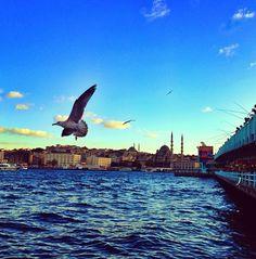 Galata bridge Istanbul Türkiye