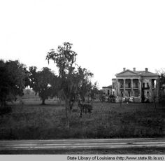 River side view of Belle Grove plantation near White Castle Louisiana :: State Library of Louisiana Historic Photograph Collection