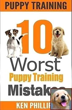 House Training A Puppy Schedule And Clicker Training Dog Down