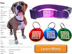 FurCode QR Pet Tag  An alternative to microchipping that doesn't require surgery!! Easy, Affordable, One Price!