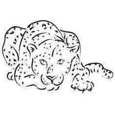 Leopard vector 501665 - by murphy_dc on VectorStock®
