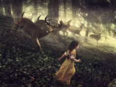 Deer's Wisdom: Gentleness in word, thought/touch, Ability to listen, Grace/appreciation for balance, Understanding what necessary for survival, Power of gratitude/giving, sacrifice for higher good, Connection to the woodland goddess, Alternative paths to goal.  unconditional love. Only love, both for ourselves and for others, can dissolve the barriers, which prevent us from realising wholeness. Goddess with Deer was Flidais; true companion of the heart. Guide when all seem…
