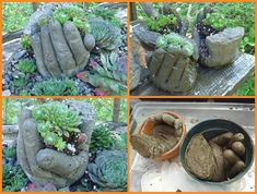 New Post has been published on http://www.amazinginteriordesign.com/wonderful-concrete-hand-planters/How Wonderful Are These Concrete Hand Planters  Image via:  blue fox farm , diy cozy home  To make these concrete hand planters first you have to mix some cement in water and then carefully fill this mixture in surgical gloves. After that rest these cement filled gloves in bowls and position the fingers in the way you want your planters to be.   Image via: studio 50  Once the cement has ...