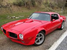 1971 Pontiac Trans Am - Pontiac Wallpaper ID 522944 - Desktop Nexus Cars Amc Javelin, American Graffiti, Harrison Ford, General Motors, Plymouth, Ford Mustang, Gp Moto, Pontiac Firebird Trans Am, Firebird Formula