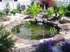 small ponds and surrounding areas ideas - Google Search