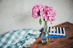 VSCO Lightroom presets - FREE bundle of Film Lightroom presets Hydrangea Paniculata, Flower Images, Flower Photos, Living Room Modern, Rugs In Living Room, Room Rugs, Quick Fire Hydrangea, February Colors, Tree Care