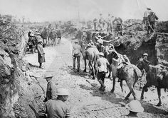 "WWI, 1916; ""Somewhere under the mud is a courduroy road (log road)"" -Sandra Gittins (@ypreswoman) 