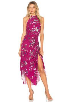 Nicholas Azalia Lace Dress In Fuchsia Pink Summer In
