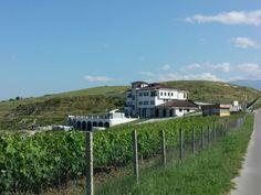 Villa Melnik Winery in Sandanski Municipality