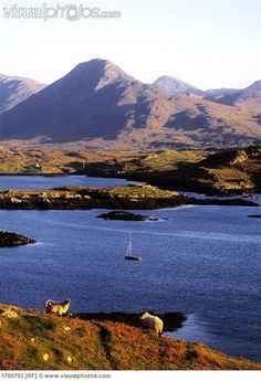 View of Diamond Hill, Connemara, Ireland.