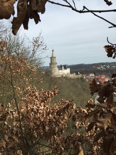 Osterburg Landscapes, City