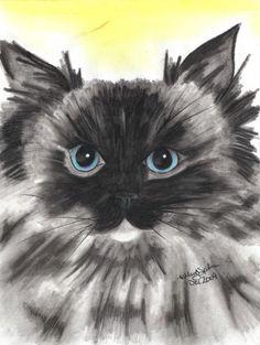China, ragdoll kitty #art #drawing #cat #charcoal