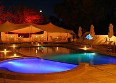 Big five Safari close to Cape Town. Inverdoorn and Iziba Safari Lodge. Game Reserve, Luxury Accommodation, Cape Town, South Africa, Safari, Big, Places, Outdoor Decor, Travel