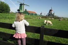 7 razones para viajar a Holanda con niños - Familias en Ruta