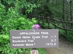 Tik hiking the Appalachian Trail - Newfound Gap, Great Smoky Mountains National Park, Tennessee #AAAMapMonth #travel #AAATravel