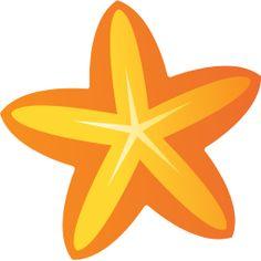 starfish flower tag
