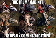 The Trump cabinet is really coming together. ☠️