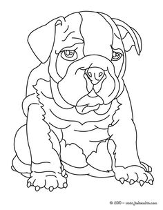 Bulldog Coloring Page There Are Many Free In DOG Pages Hellokids Members Love This
