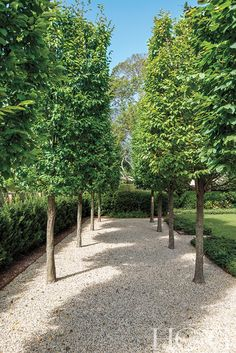 View a East Hampton Home with a Stunning Makeover - Hamptons Cottages & Gardens - June 2019 - Hamptons Formal Garden Design, Back Garden Design, Backyard Garden Design, Privacy Landscaping, Country Landscaping, Front Yard Landscaping, Inexpensive Landscaping, House Landscape, Garden Landscape Design