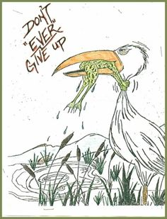 Image of frog and bird with saying never give up | via reddit